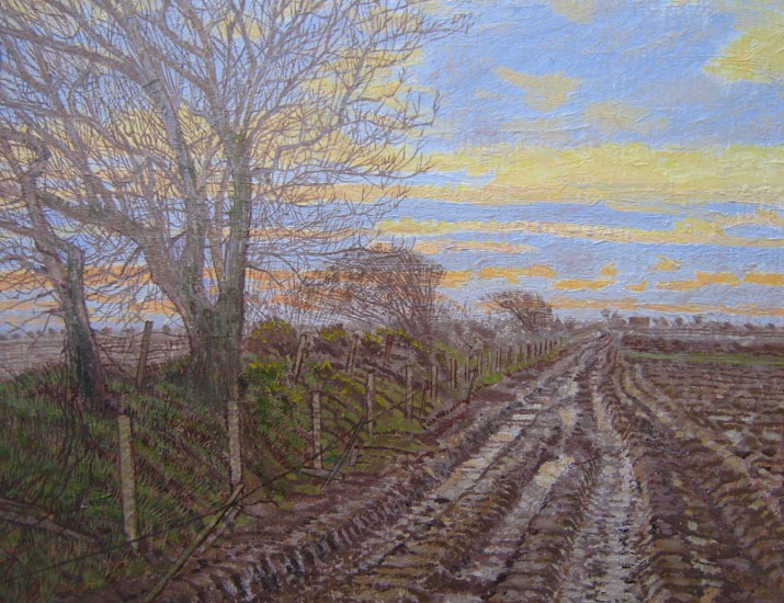 Maurice Sheppard – Dusk and Soil – Pembrokeshire