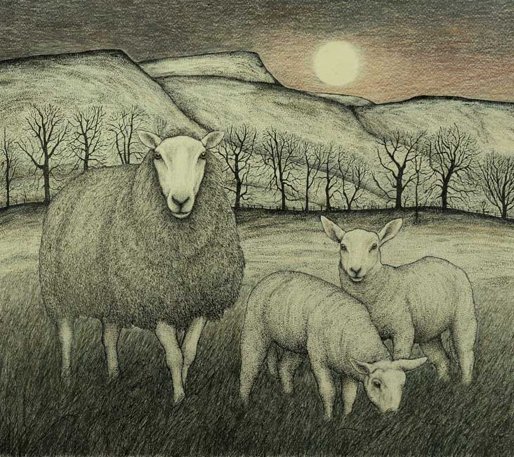Seren Bell – Twin Lambs Full Moon