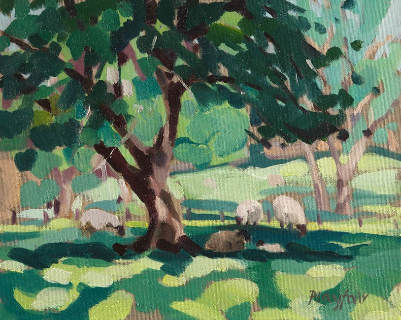 Annabel Playfair - Sheep in Dappled Light - Oil on Canvas - 10 x 12 inches