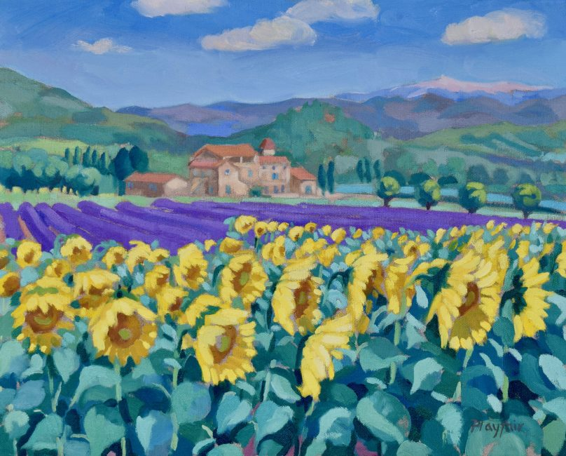 Annabel Playfair - Sunflowers below Mont Ventoux, Luberon, France - Oil on Canvas - 16 x 20 inches