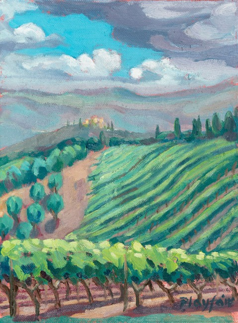 Annabel Playfair - Vineyards, Tuscany 2. - Oil on Canvas - 8 x 6 inches