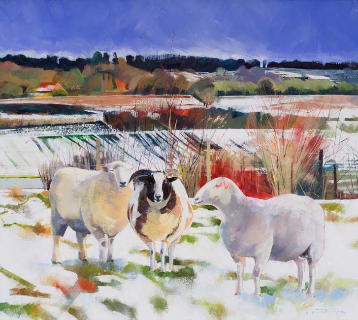 Louis Turpin - Three Sheep in a Conversation - Oil on Canvas - 22 x 25 inches