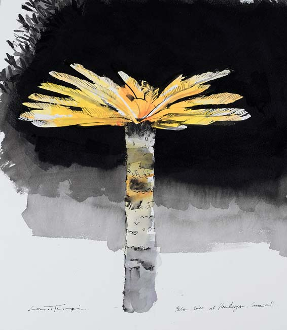 Louis Turpin - Cornish Palm I - Indian Ink - 13.6 x 16.5 inches