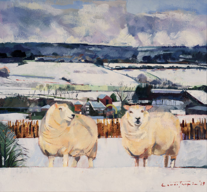 Louis Turpin - Valley Farm Sheep - Oil on Canvas - 14 x 16 inches