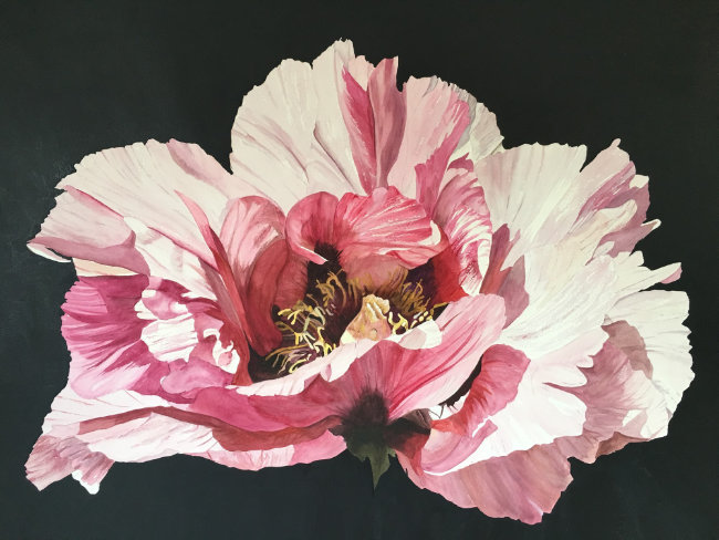 Louise Walker - Night Peony - Watercolour/acrylic on paper - 55 x 75 cms