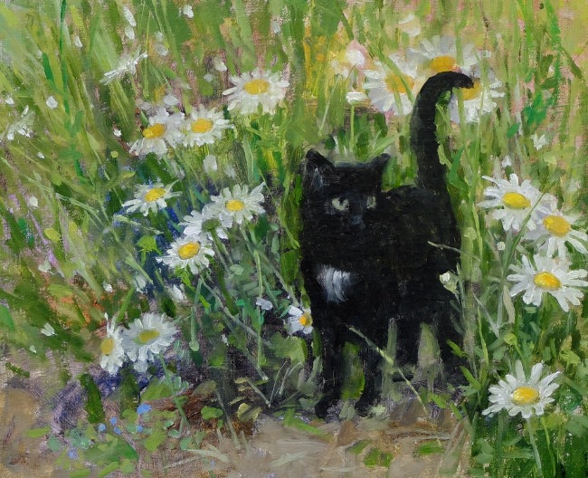 Pamela Kay - Ruby in the Daisies - Oil on Board - 9 x 11 inches