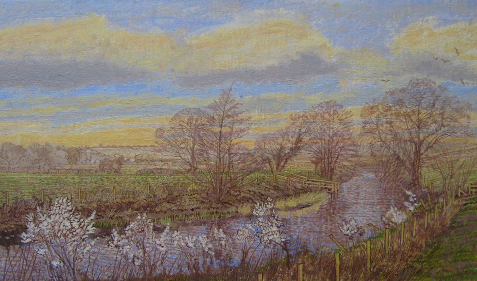 Maurice Sheppard - Spring Song by the River Cleddau - Oil and Linen on Board - 9.5 x 16 inches