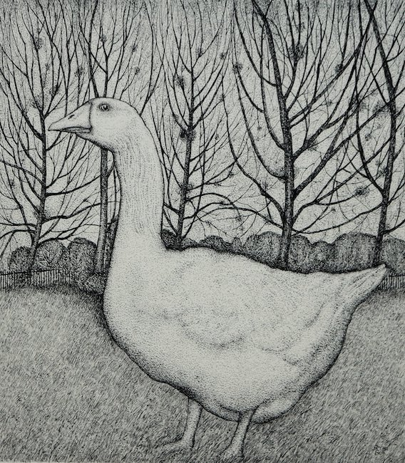 Seren Bell - Goose - Mixed Media - 11 x 12 Inches