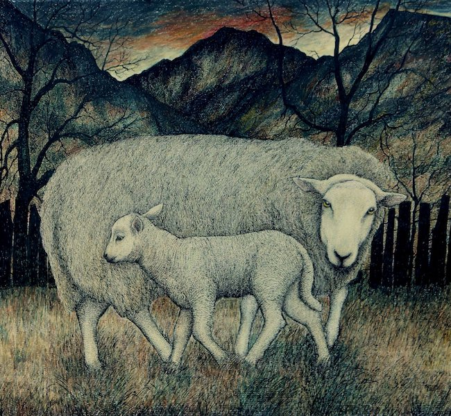 Seren Bell - Lamb North Wales - Mixed Media - 16 x 14.5 Inches