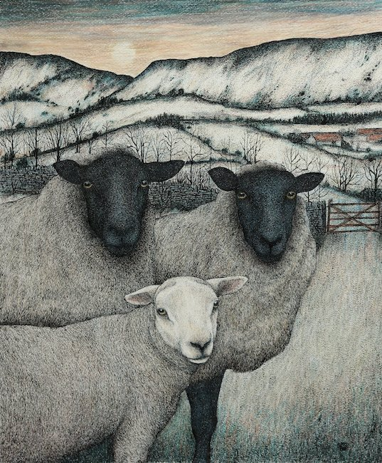 Seren Bell - Suffolk Ewes - Mixed Media - 21 x 17 Inches