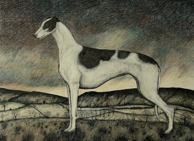 Seren Bell - The Greyhound - Mixed Media - 18 x 23 Inches