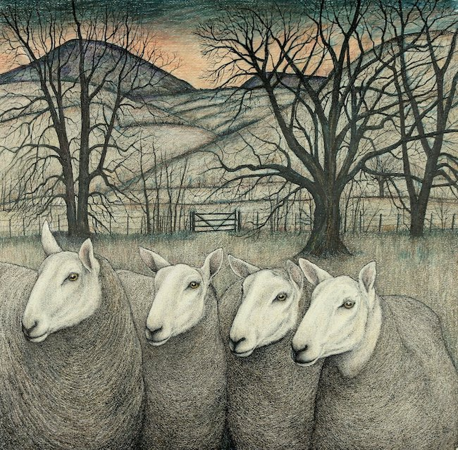 Seren Bell - Welsh Mule Ewes - Mixed Media - 23 x 23 Inches