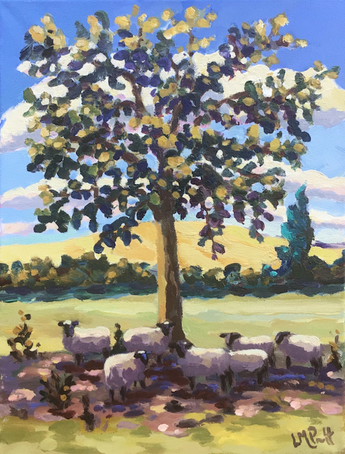Lucy Pratt - September Sheep - Oil on Canvas - 16 x 12 Inches