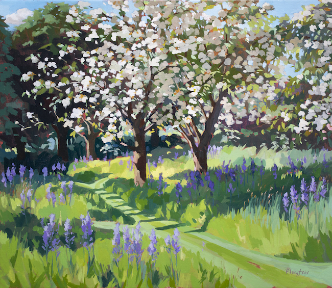 Annabel Playfair - Cherry Blossom and Camassias - Oil on Canvas - 24 x 28 Inches